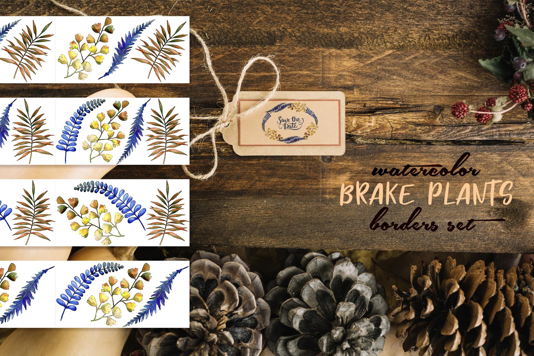 Brake plants PNG watercolor set example image 8