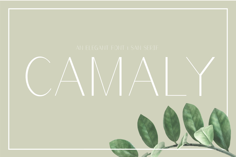 Camaly   san serif example image 1