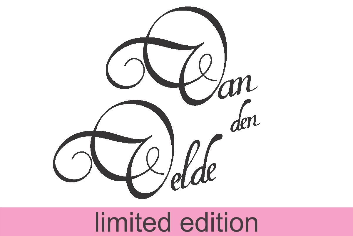 Van den Velde Script  (limited version) example image 1