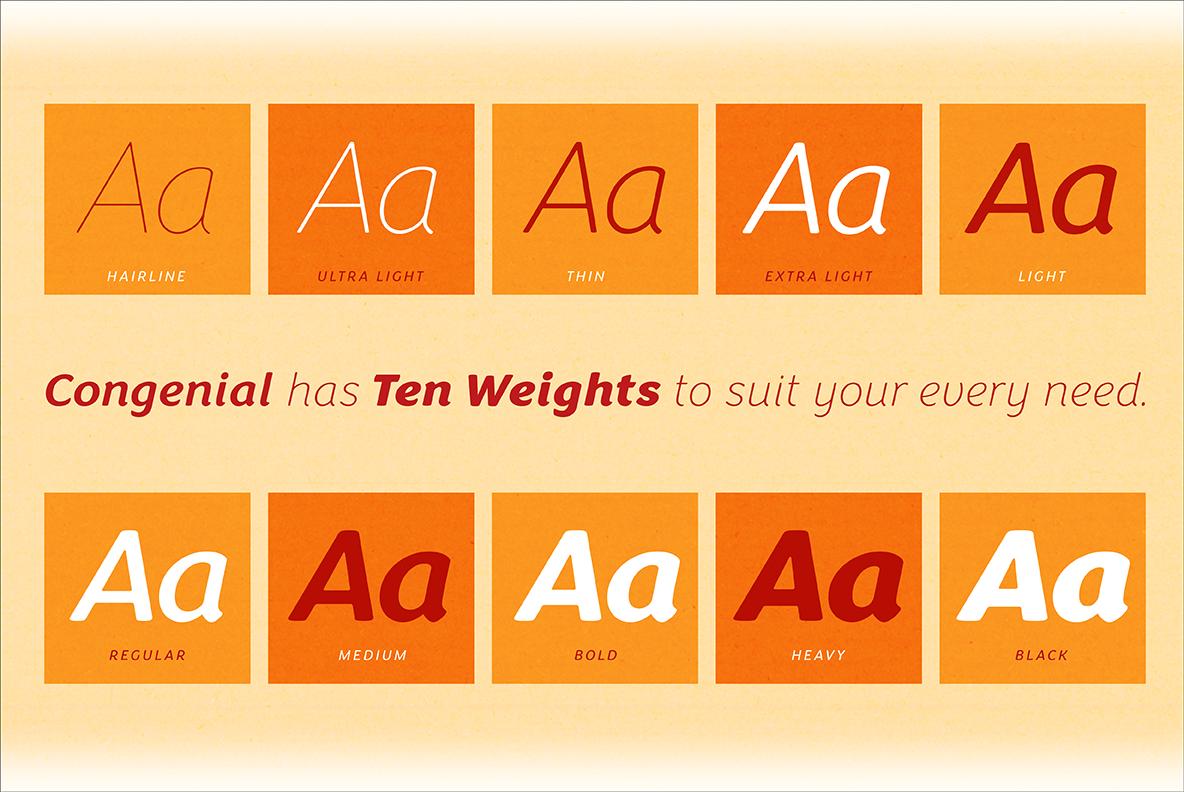 Congenial Italic Extra Light example image 2