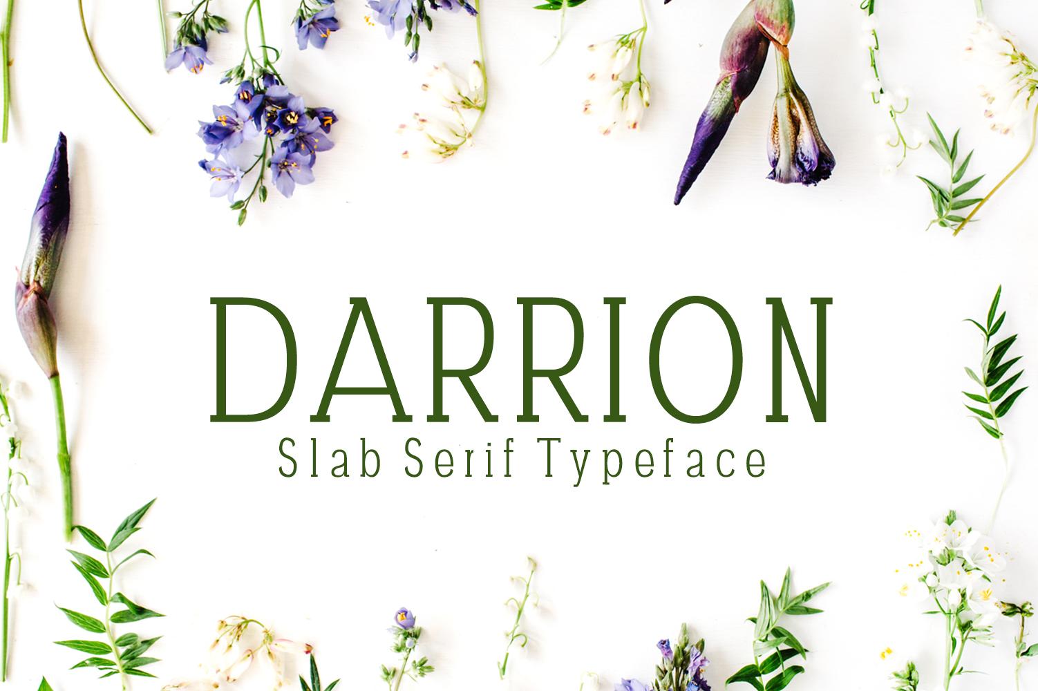 Darrion Slab Serif Typeface example image 1
