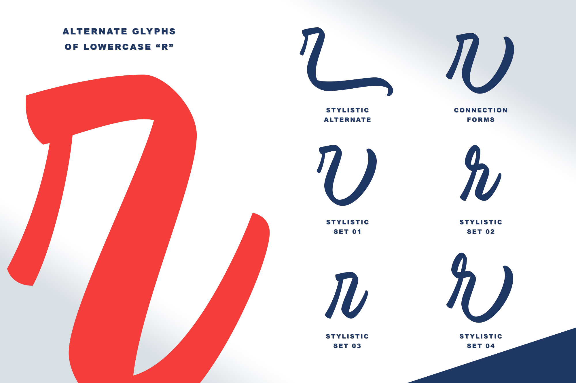Windgard | Clean Brush Script example image 5