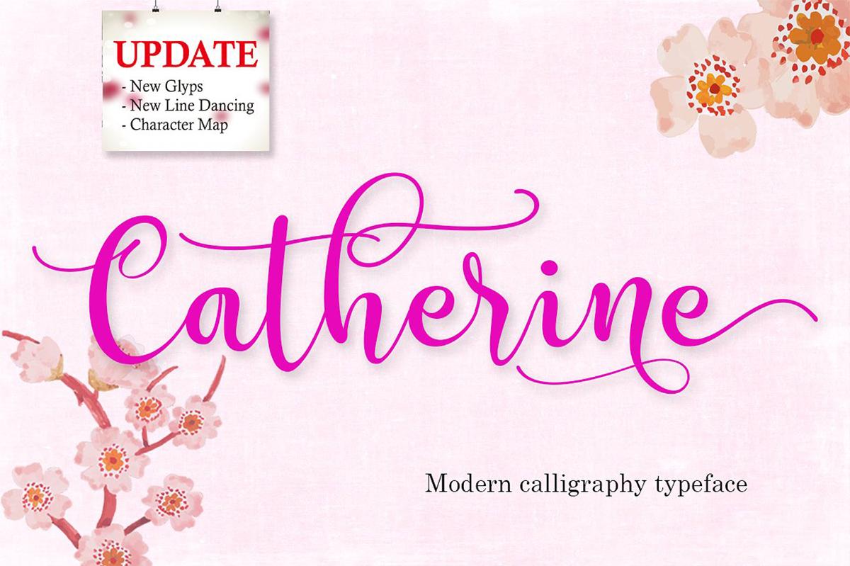The Script Font Bundle example image 19