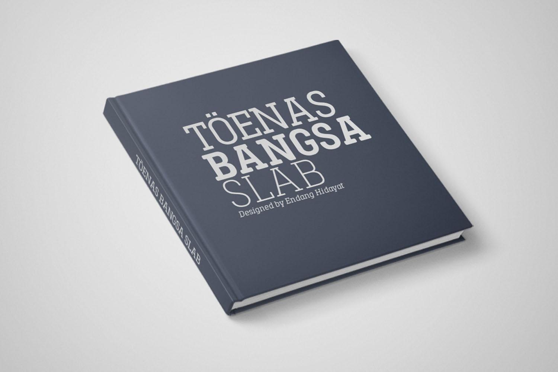 Toenas Bangsa Slab example image 7