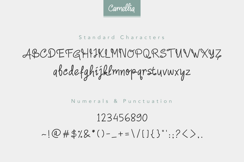 Camellia Handwritten Font example image 9