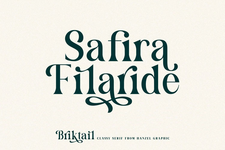 Briktail//Modern Serif Font example image 3