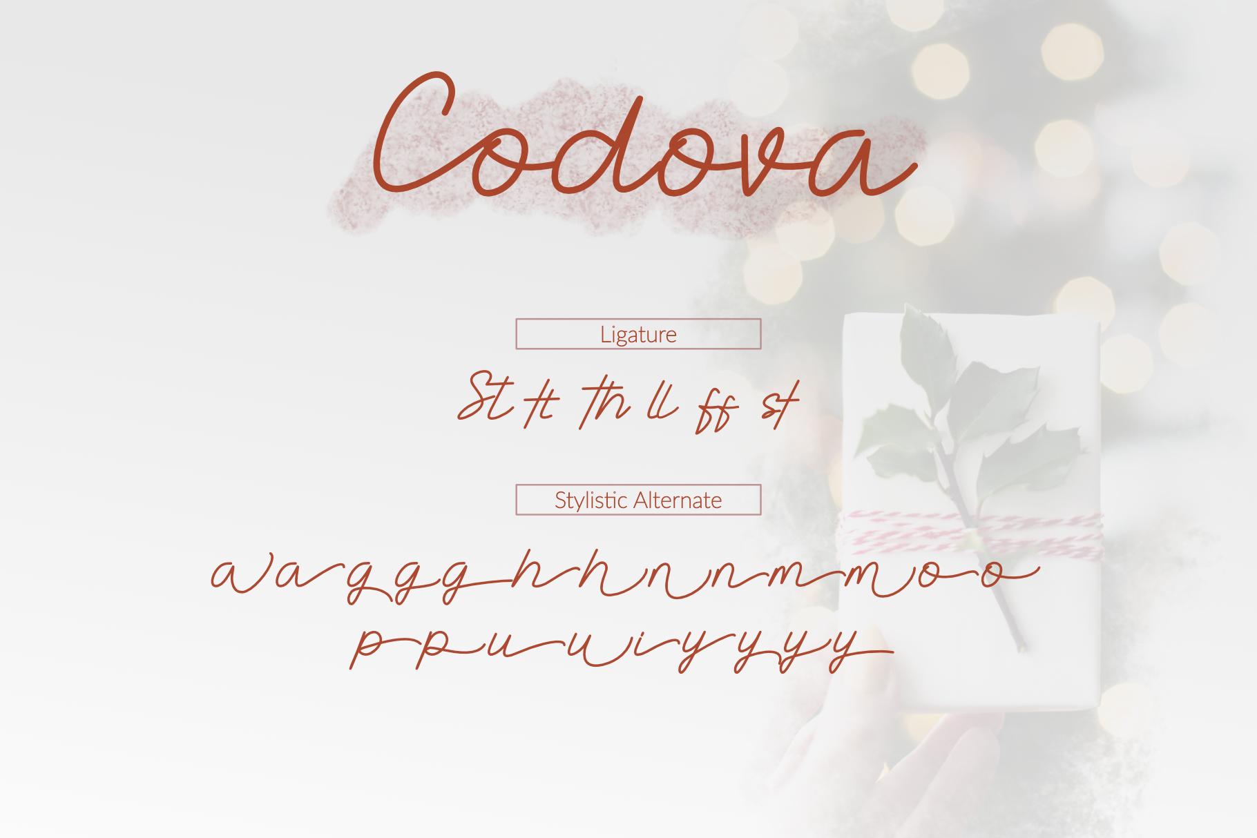 Codova Signature Font example image 2