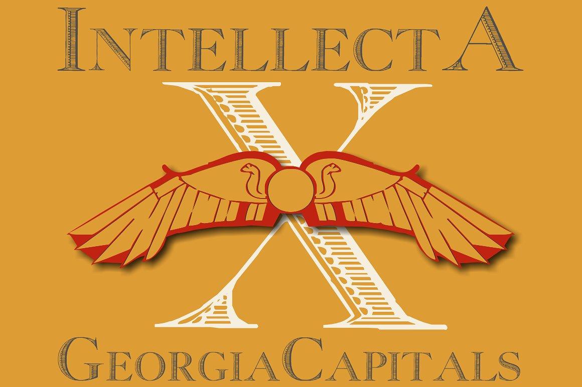 Georgia Capitals example image 1