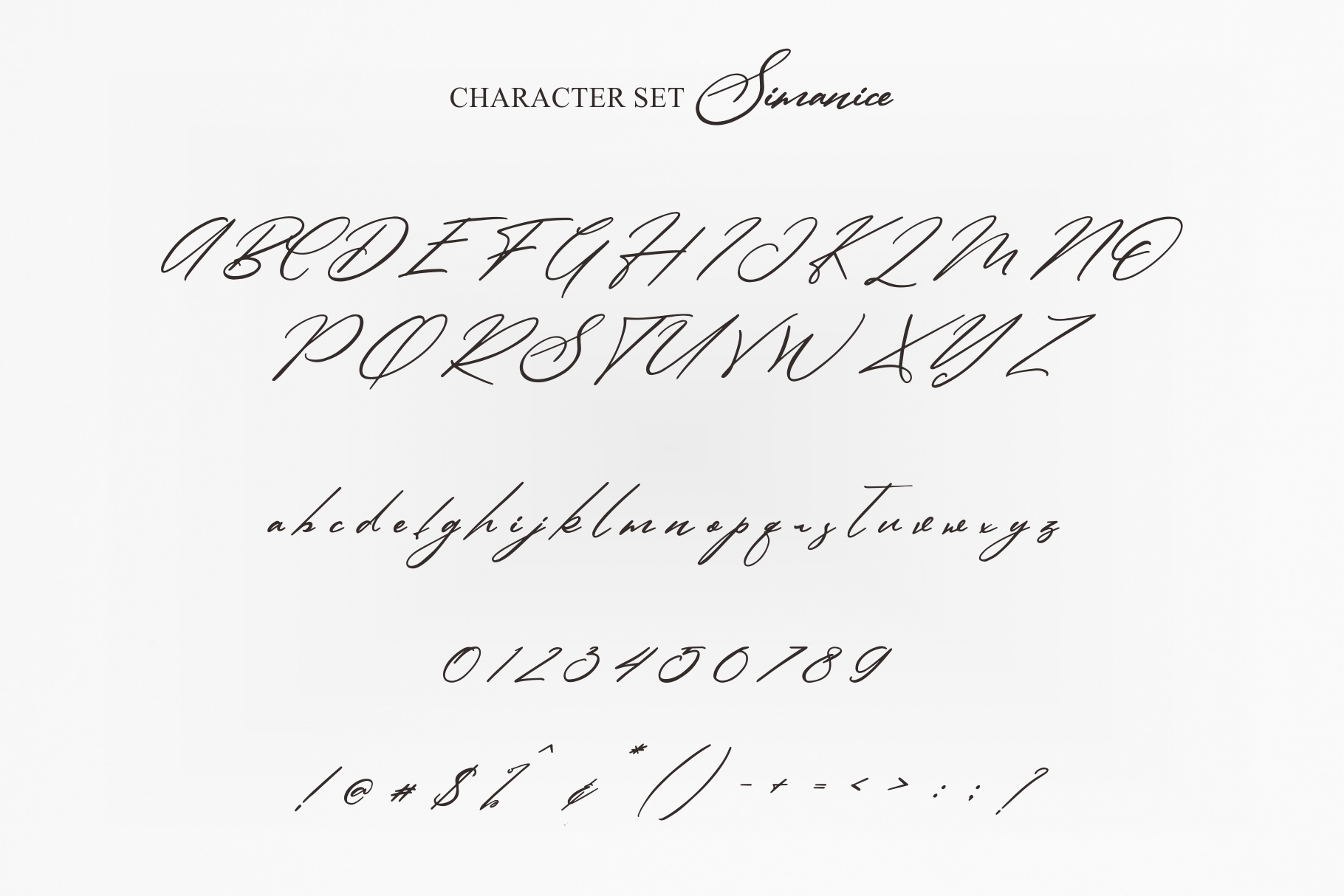 SIMANICE Script example image 6