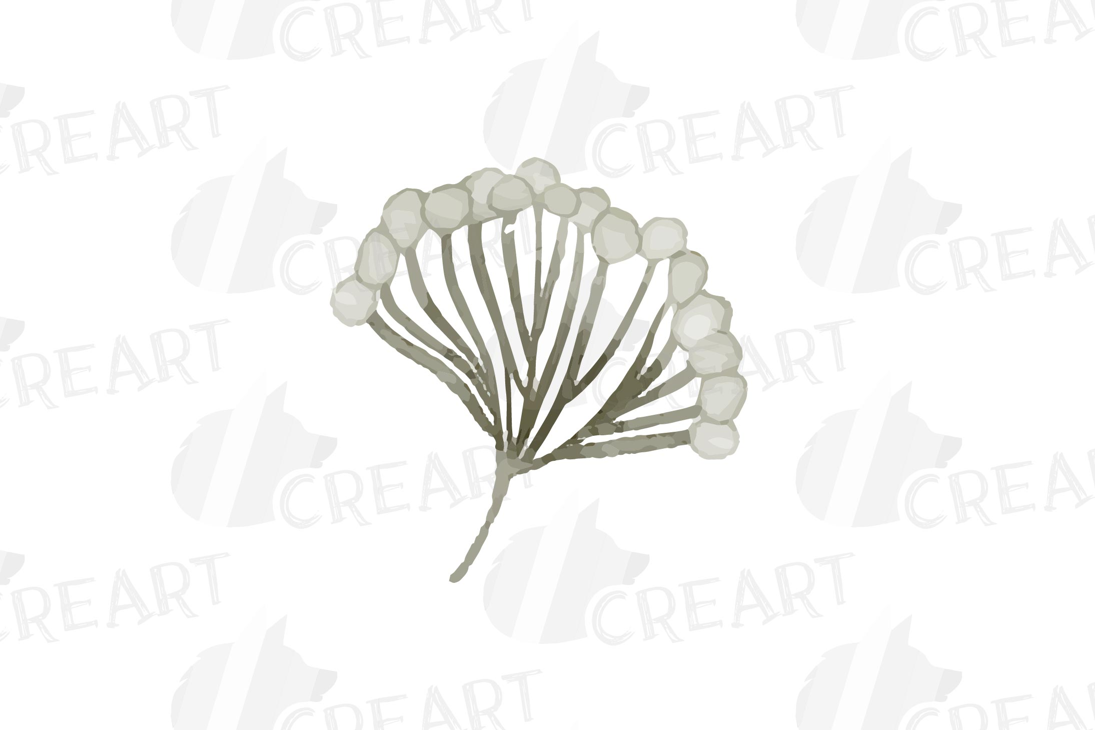 Cotton bolls and fir branch leafy autumn and winter decor example image 13
