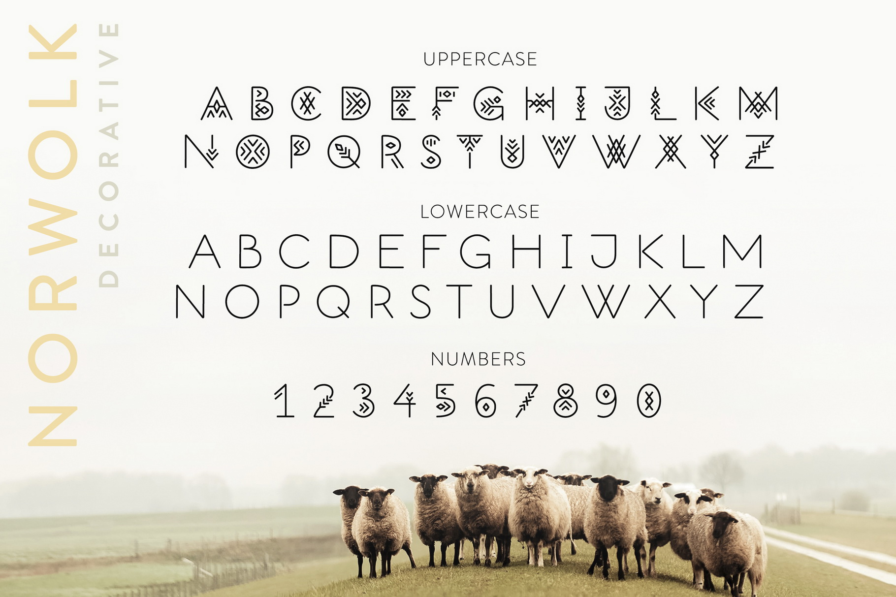 Norwolk - Thin Line Decorative Font example image 3