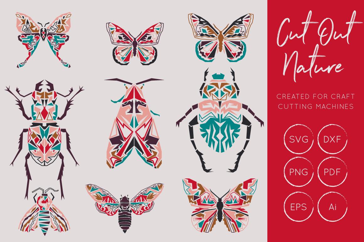 Butterflies and Beetles SVG Bundle example image 2