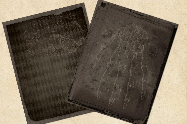 Dark Grunge Anatomy Notebook Paper example image 3