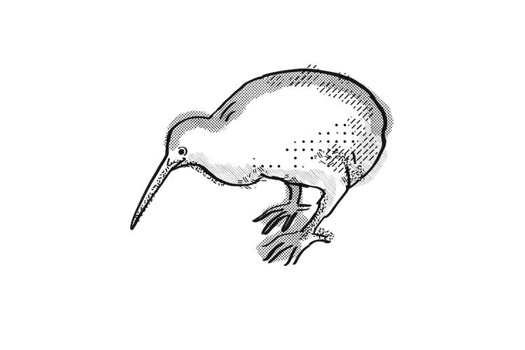 Kiwi New Zealand Bird Cartoon Retro Drawing example image 1