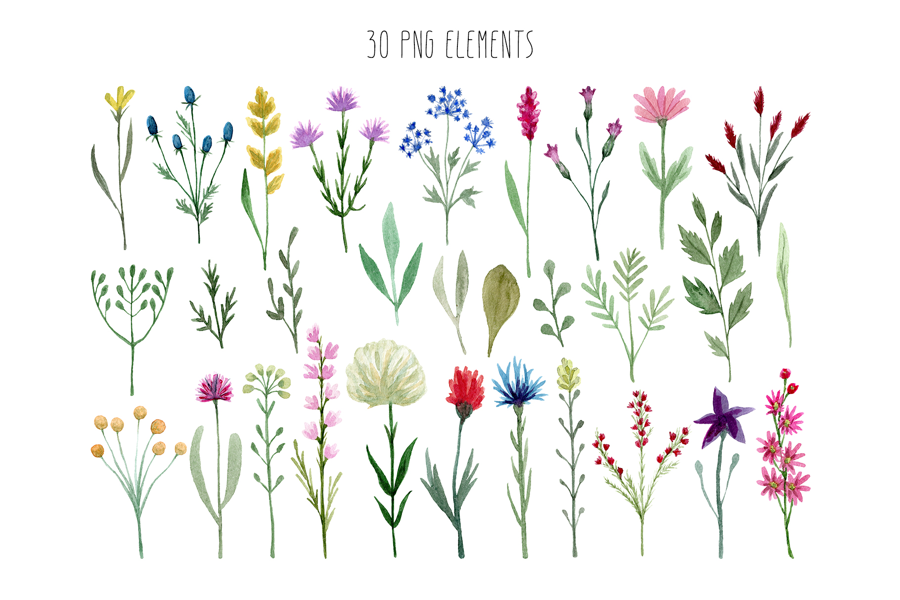 Watercolor Wildflowers example image 3