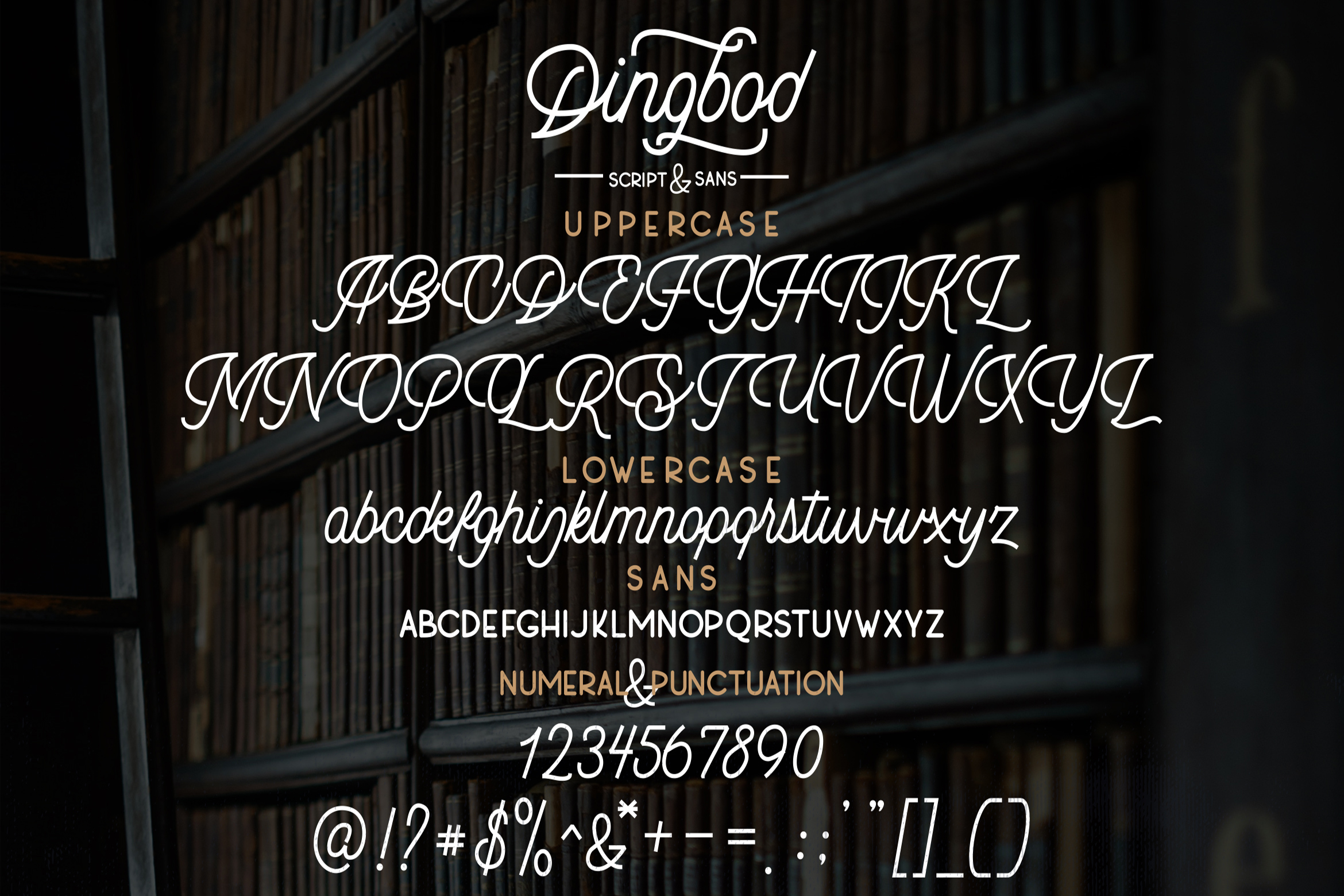 Dingbod - Script and Sans example image 14