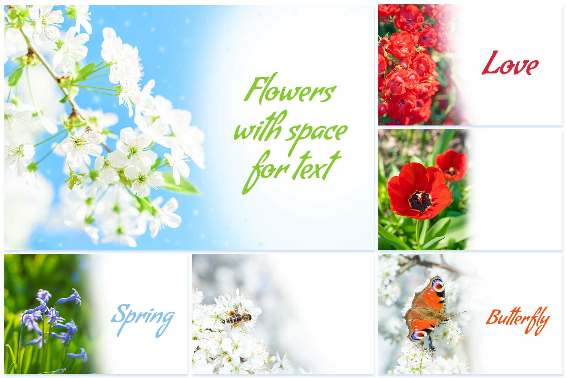 Spring Flowers and Paintings Bundle example image 2