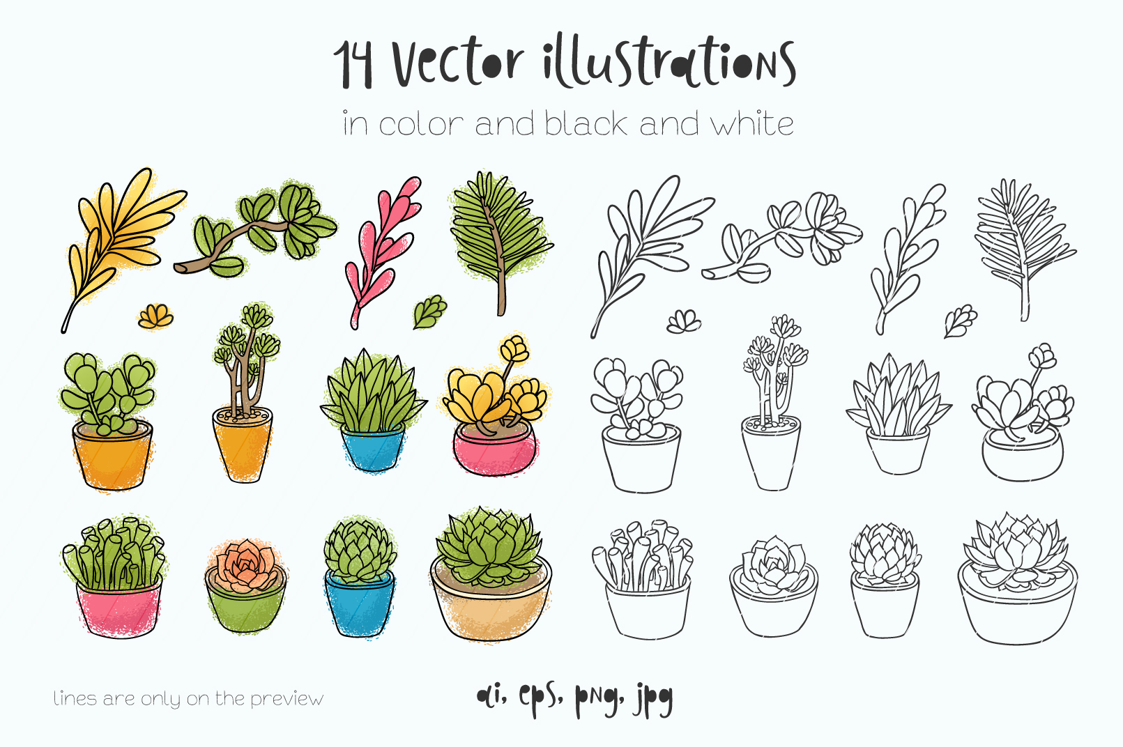 Succulents 14 vector illustrations example image 2