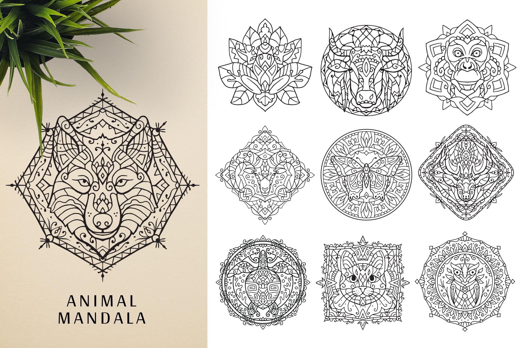 300 Vector Mandala Ornaments example image 21