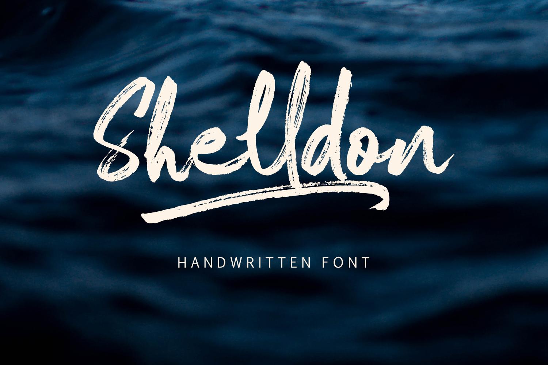 Shelldon Font example image 1