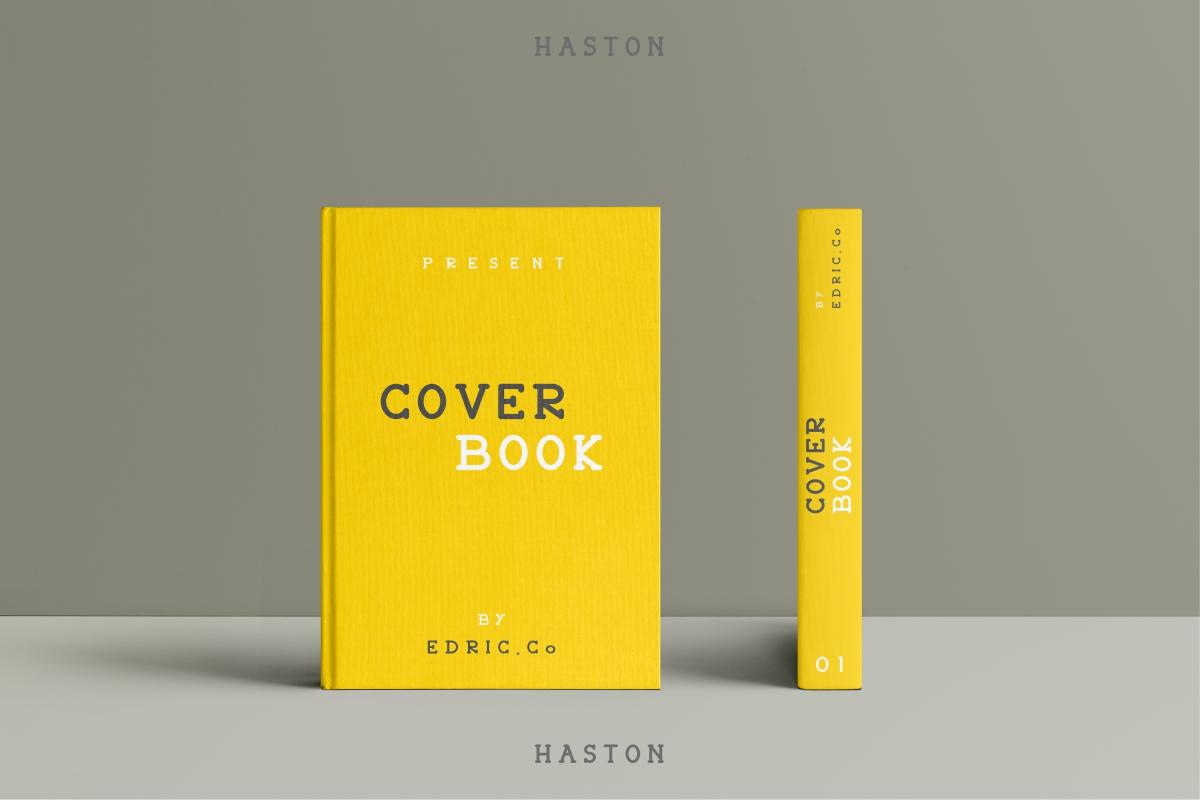 HASTON example image 11