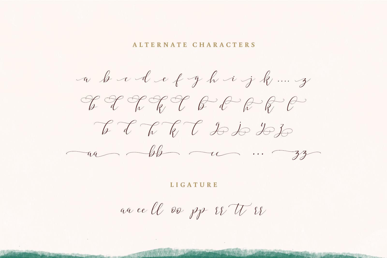 Hyldae Script Font example image 9