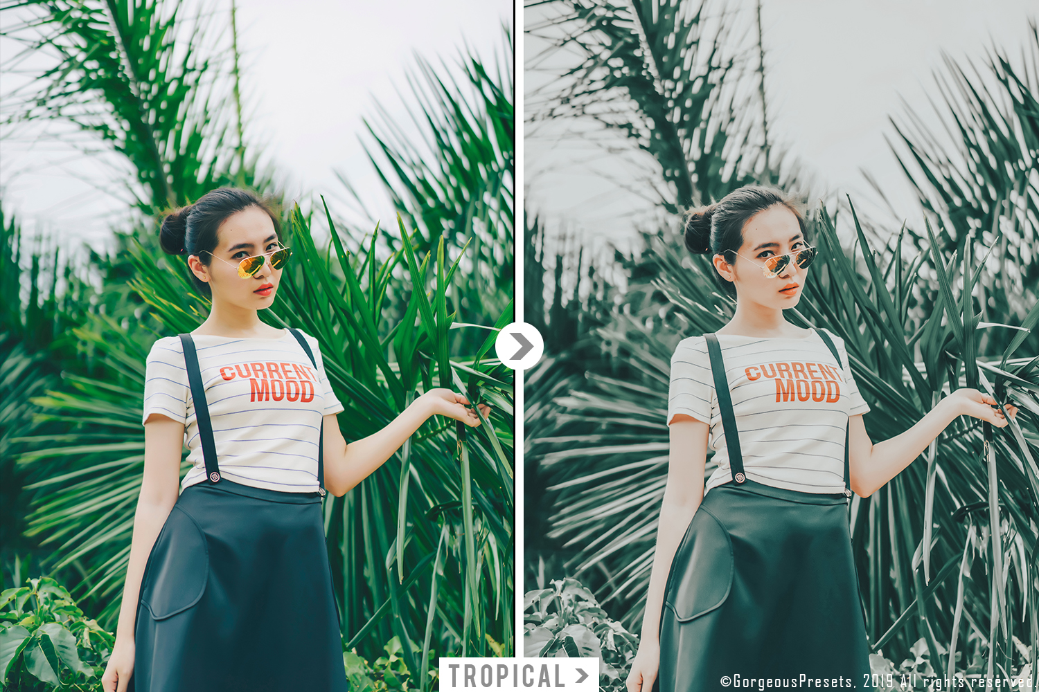 Mobile Lightroom Preset TROPICAL example image 3