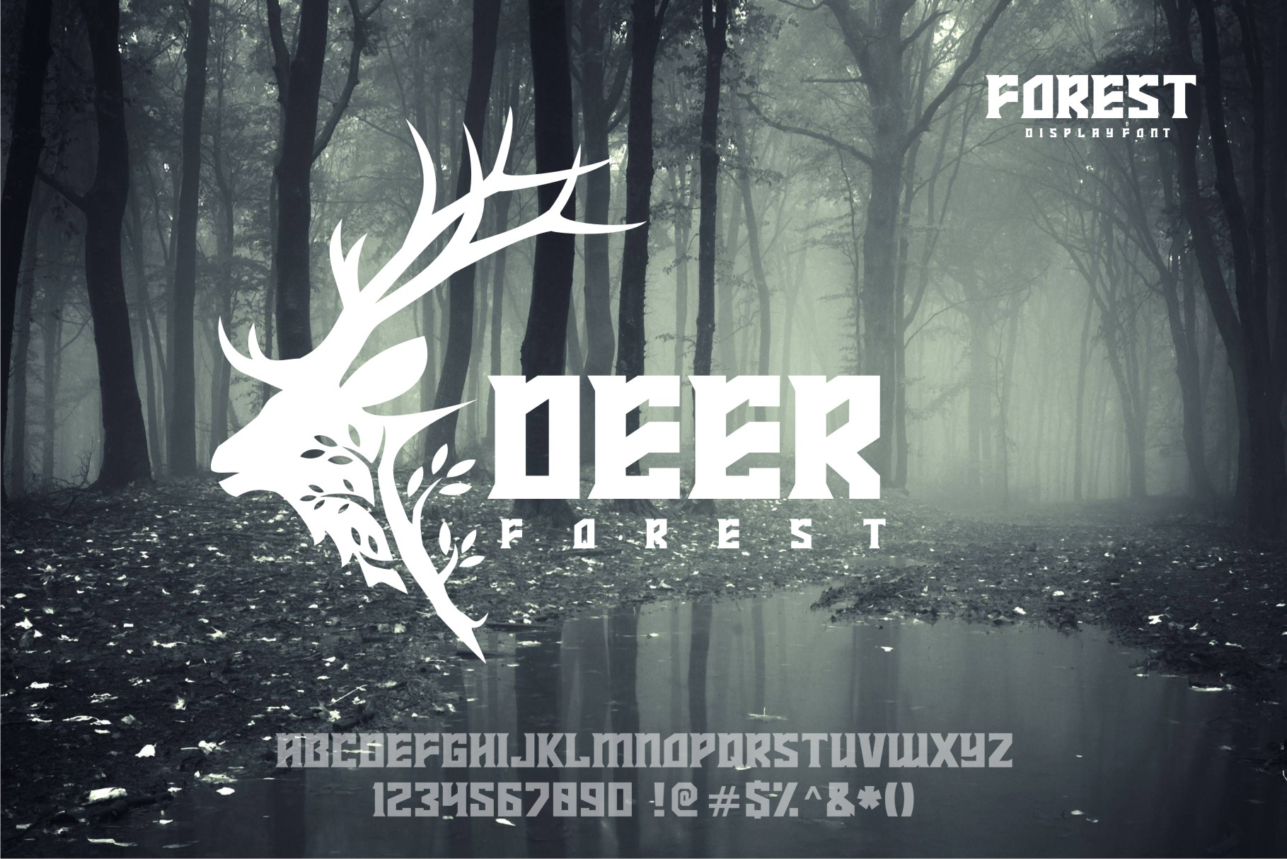 FOREST display font example image 3