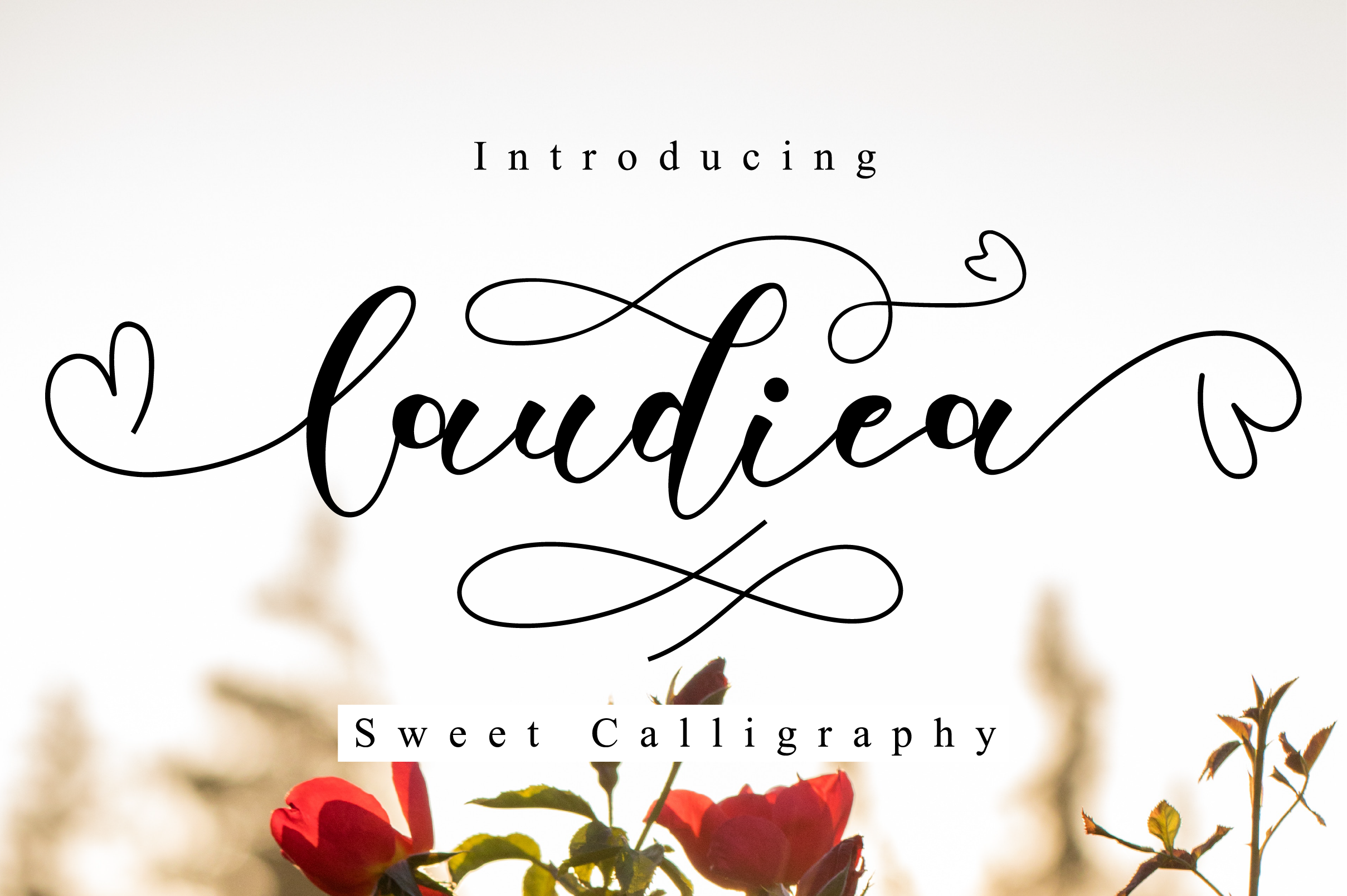 Spectacular Fonts Bundle example image 9