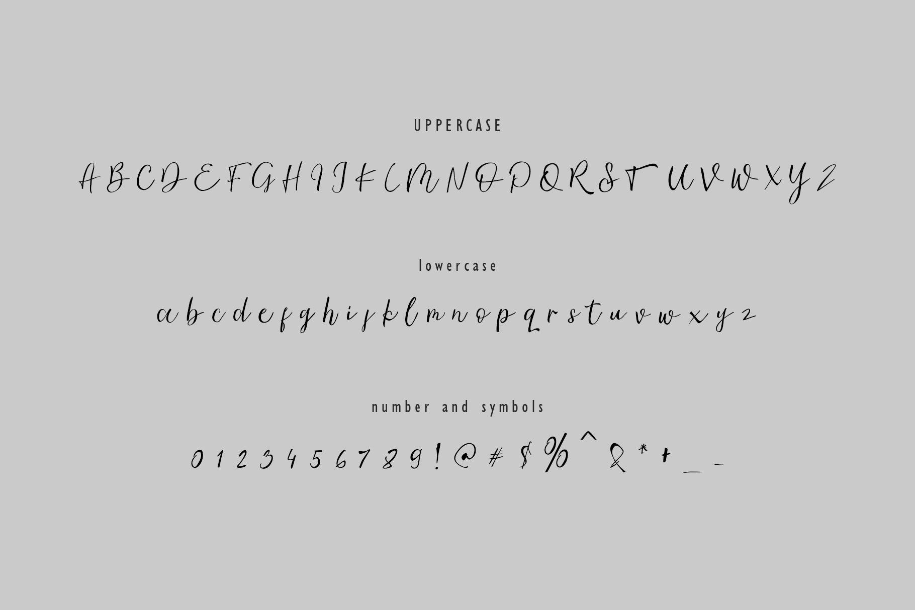 Ambre || Script Font example image 9