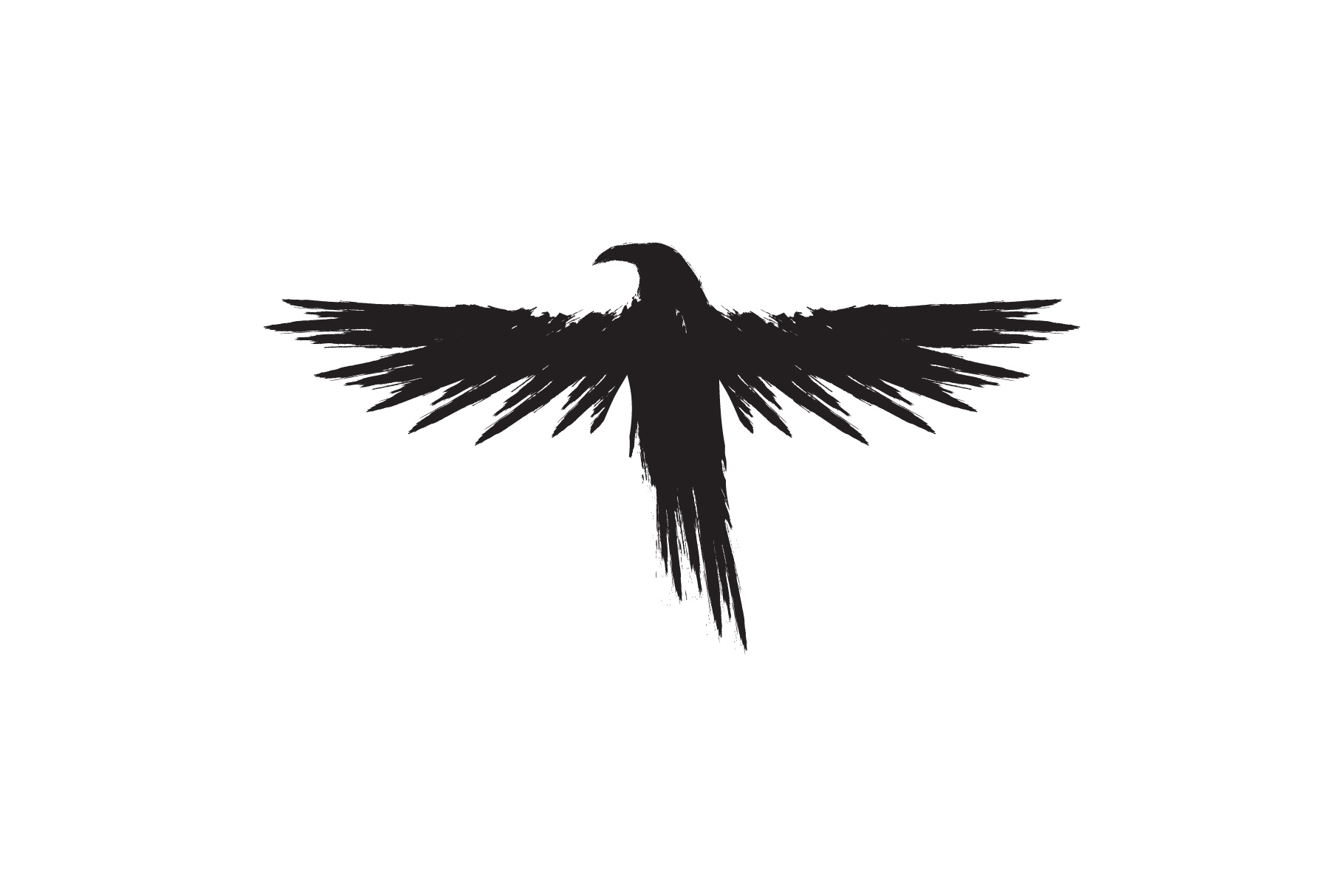 Black raven crow body and wings. example image 5