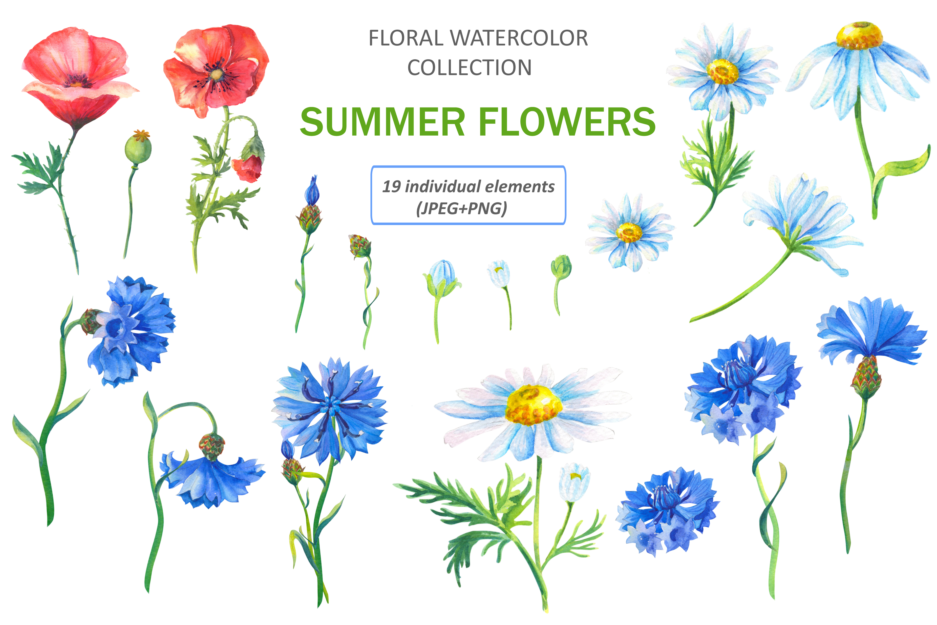 SUMMER FLOWERS.WATERCOLOR. example image 2
