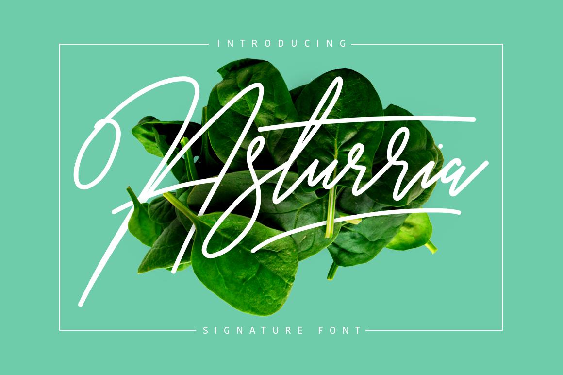 Asturria Signature example image 1