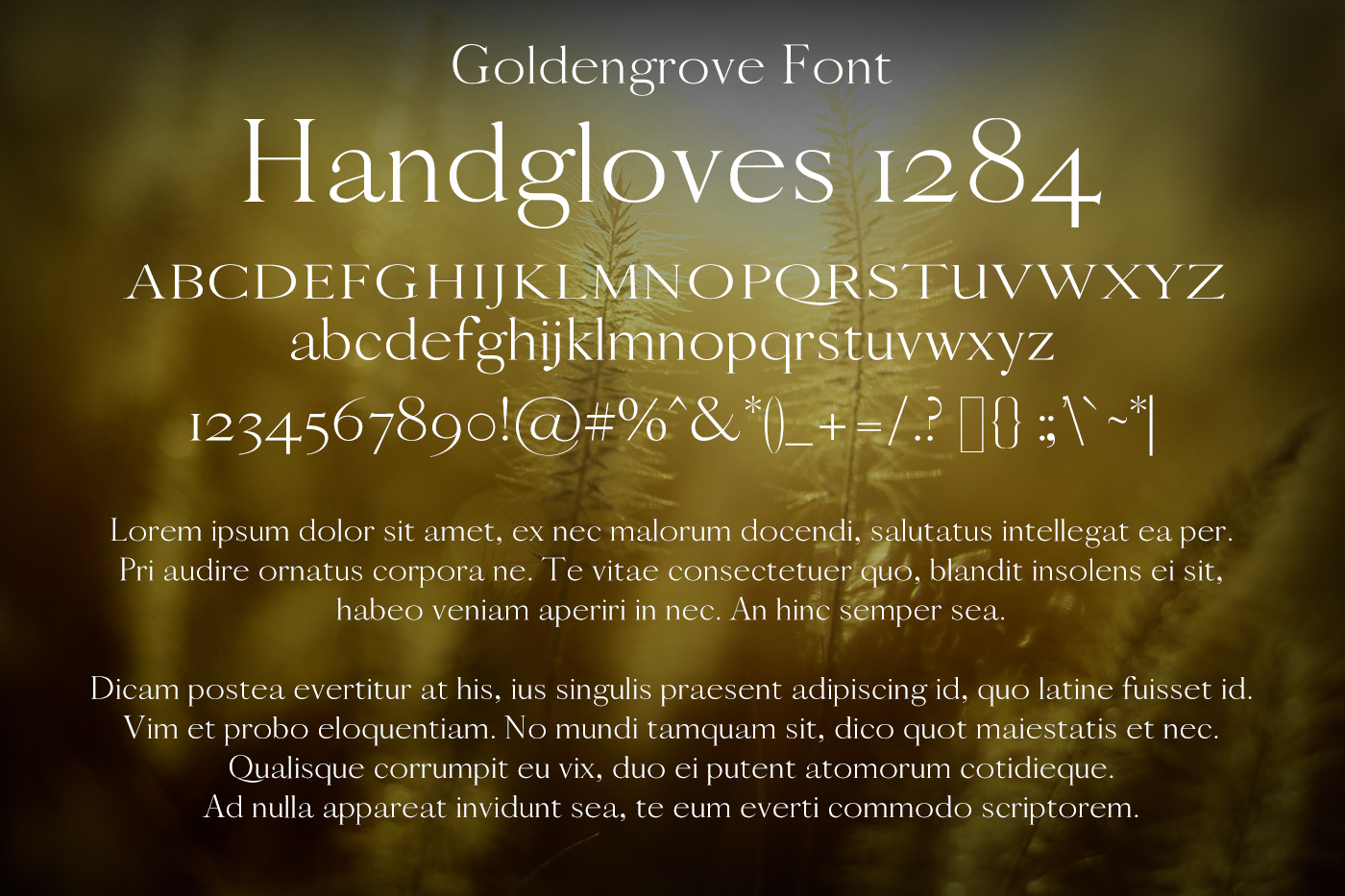 Goldengrove Font example image 2