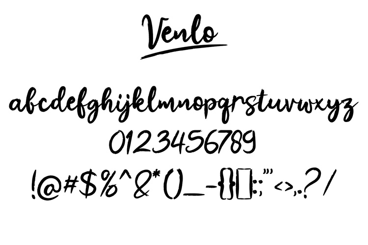 Venlo Brush Font example image 7