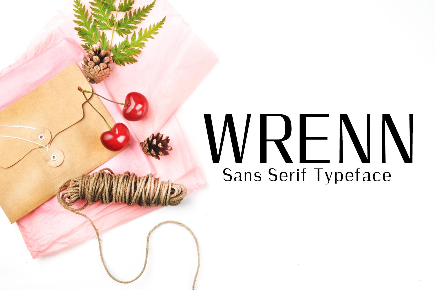 Wrenn Sans Serif 6 Font Family example image 1