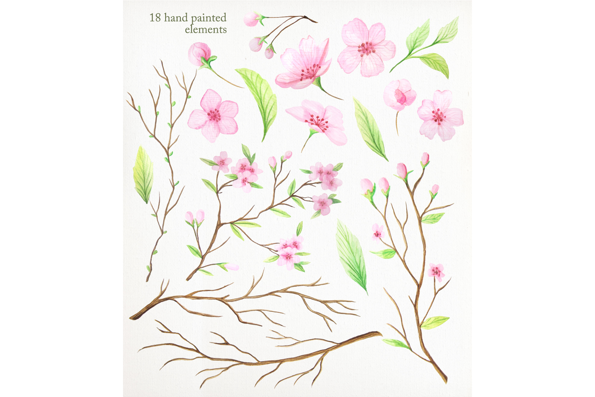 Watercolor Cherry Blossoms example image 2