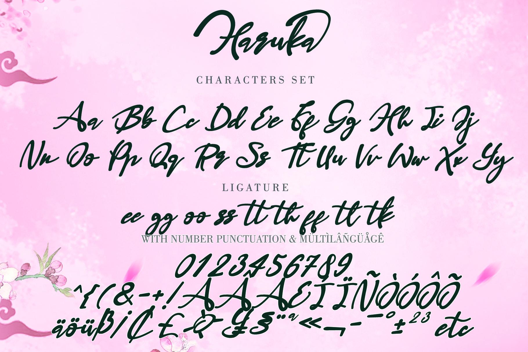 Haruka example image 4
