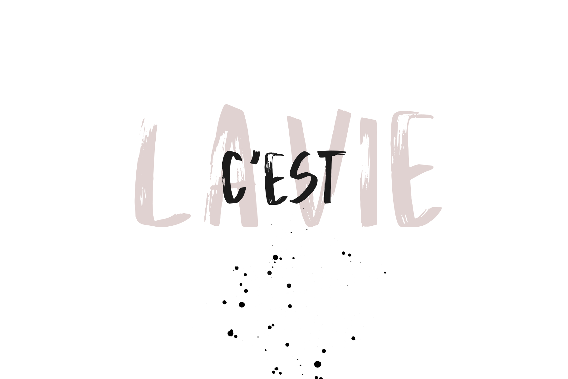 La Vie - A Handwritten Brush Font example image 2