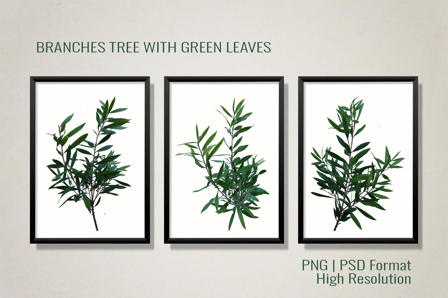 Three Branches Tree With Green Leaves PNG|PSD example image 4