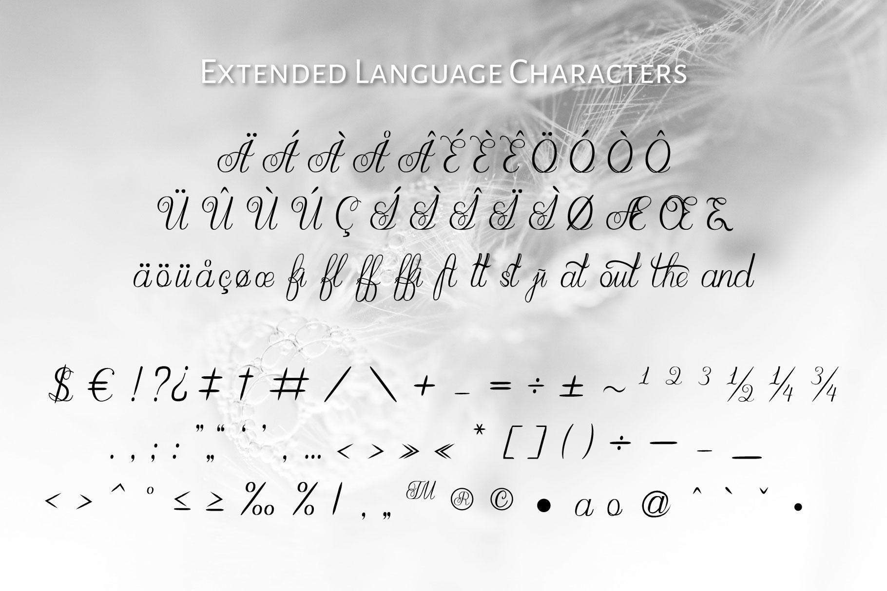 Maganda script example image 3