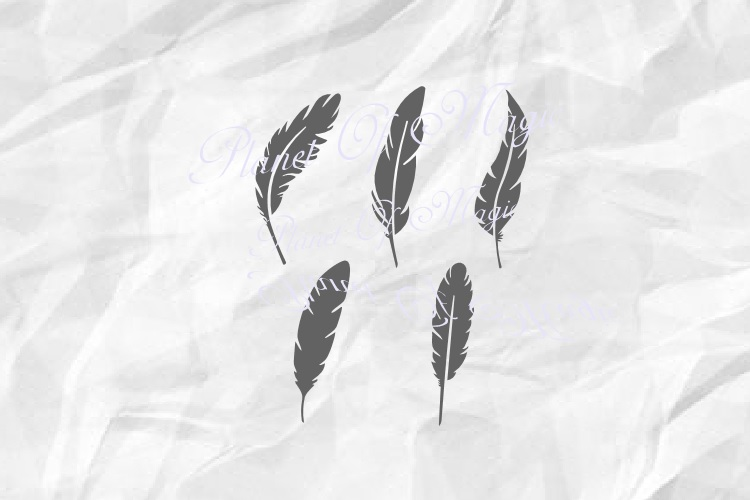 Feathers Svg, Feather Bundle Svg, Feather Png example image 2