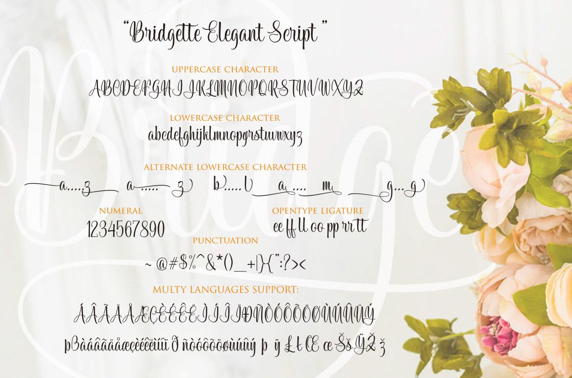 Bridgette Elegant Script example image 8