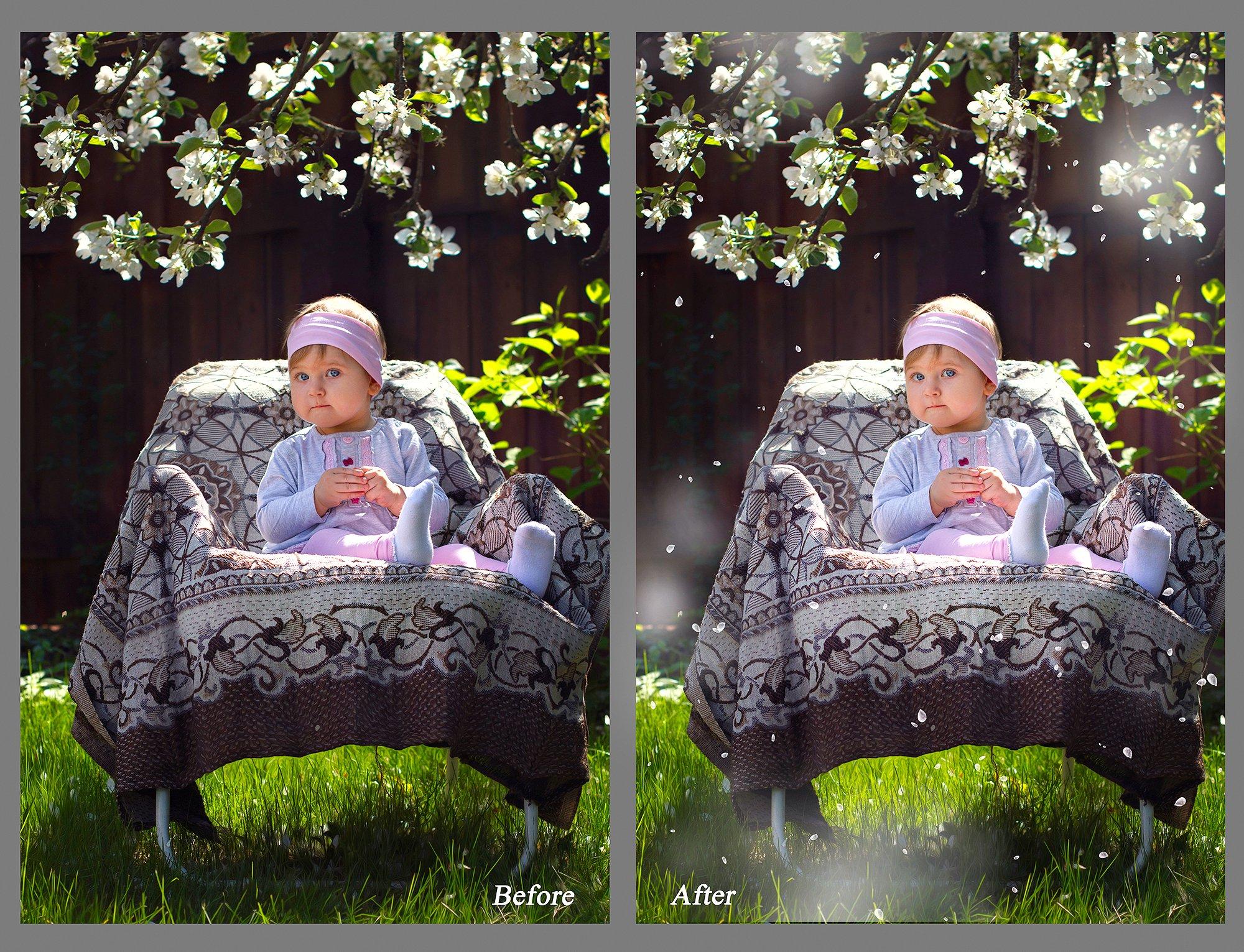 White petals photo overlays example image 5