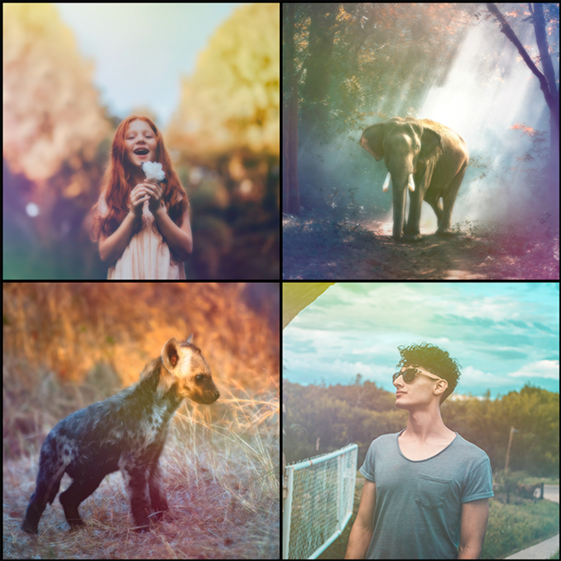 5000 Professional Photo Overlays example image 6