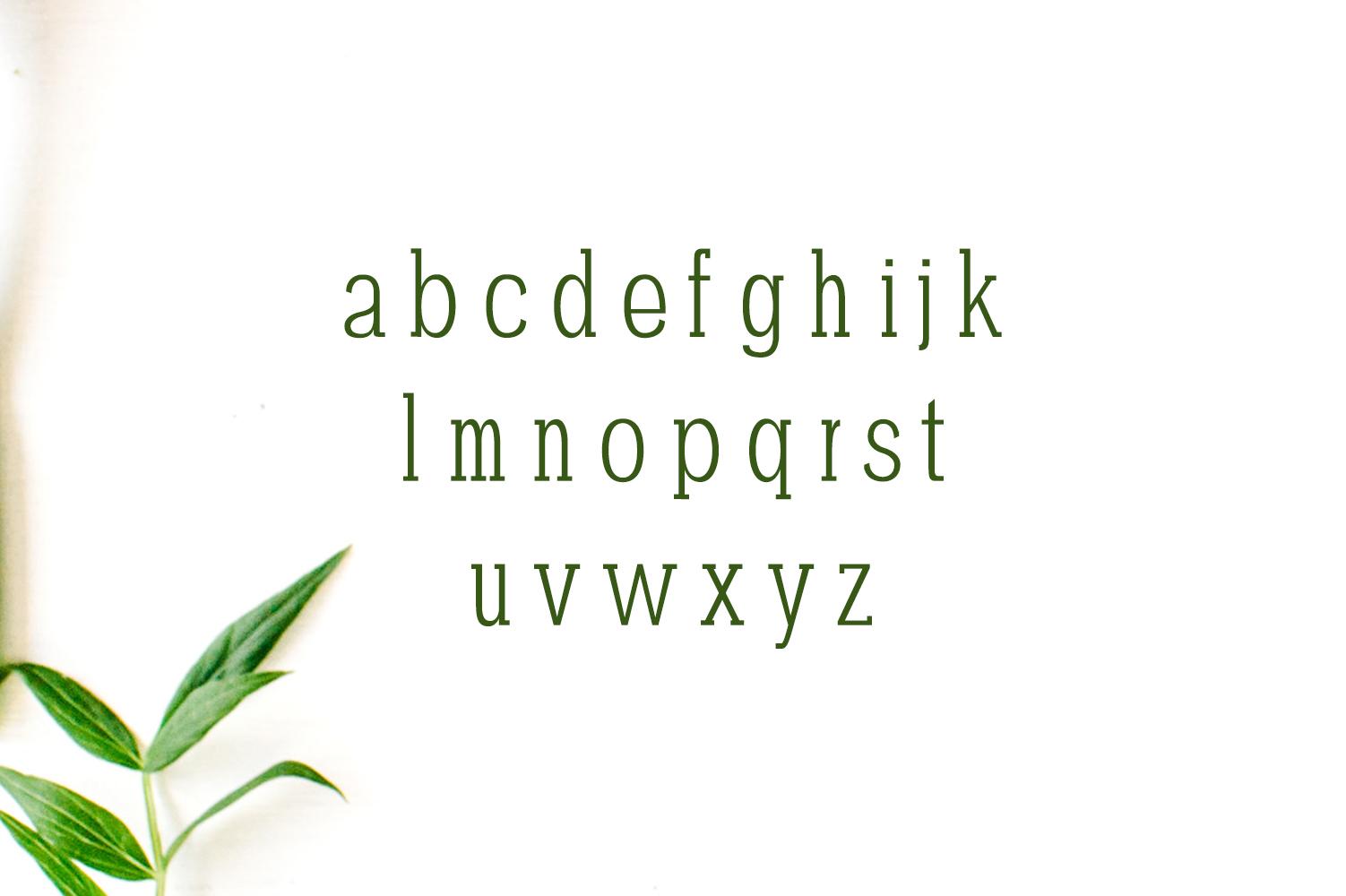 Darrion Slab Serif Typeface example image 3