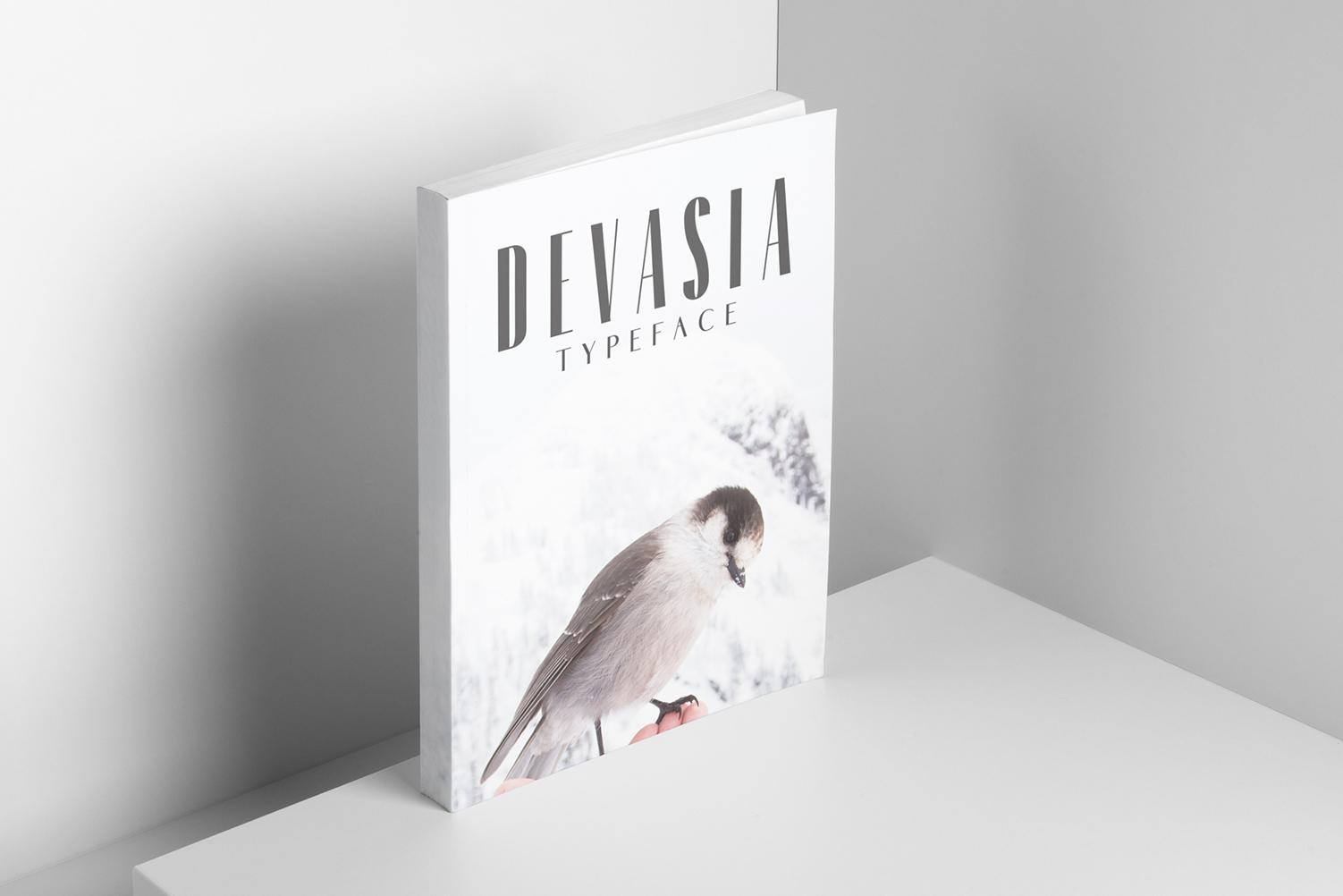 Devasia Sans Serif Font Family Pack example image 5