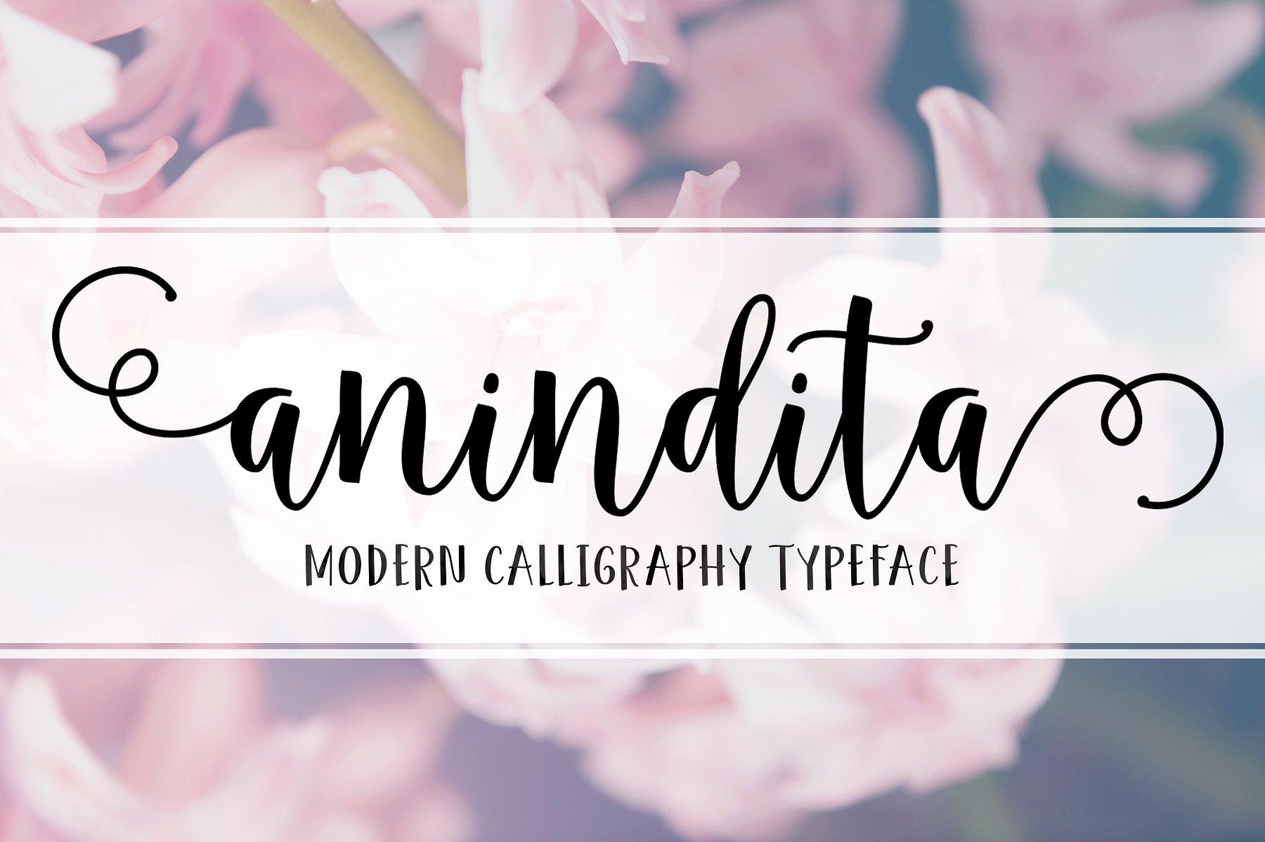 Anindita Script example image 1