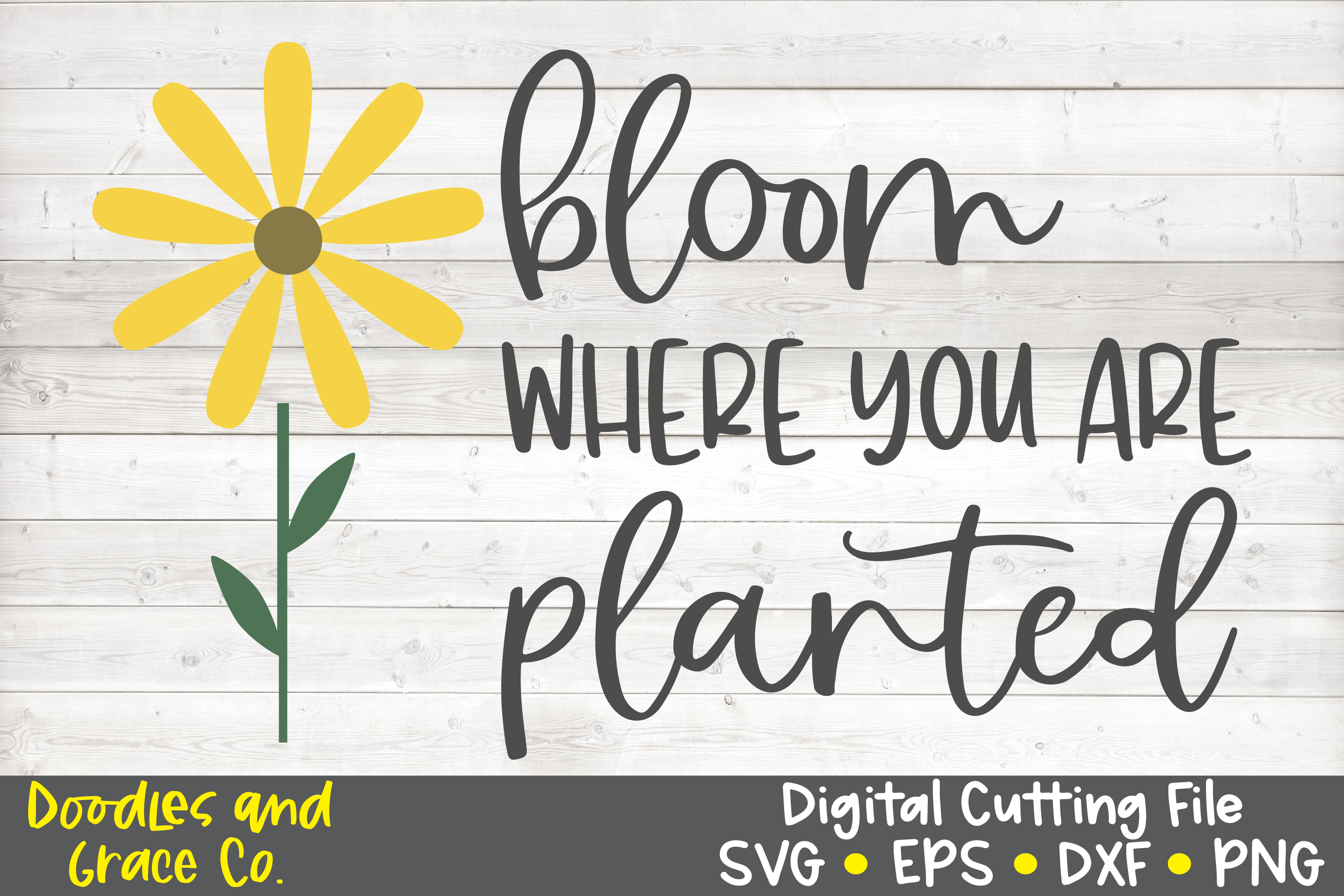 Bloom Where You Are Planted Svg Eps Dxf Png
