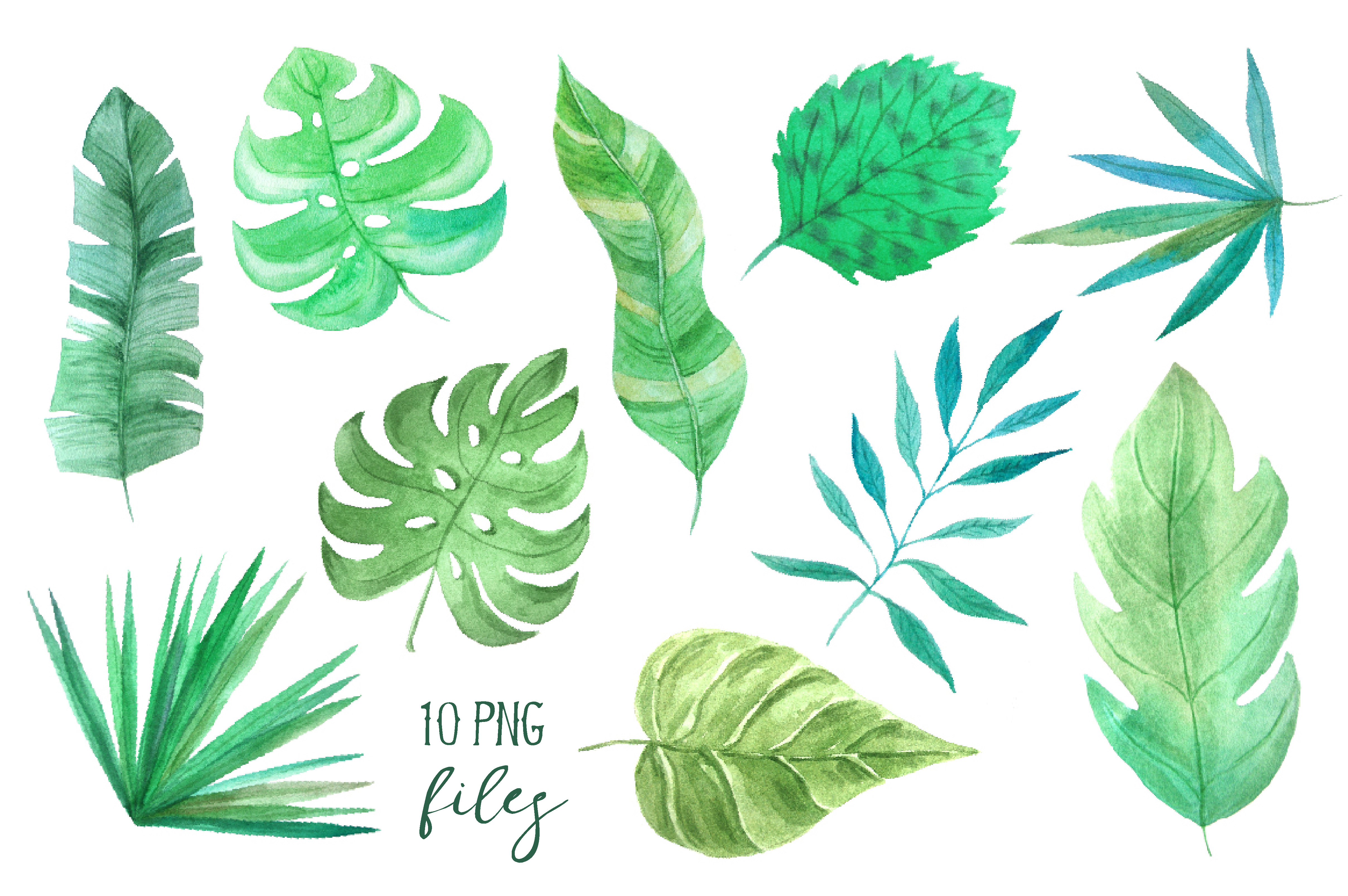 Watercolor Tropic Leaves Set example image 2